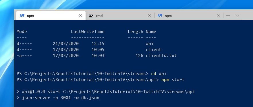 Windows 10 Tabbed Command Prompt example