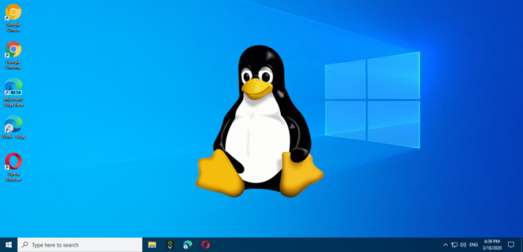 Windows Subsystem for Linux is making inroads with developers