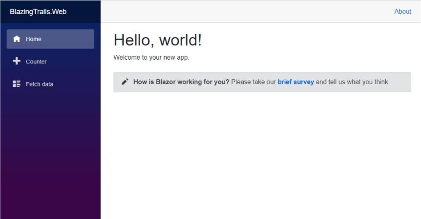 First run of a boilerplate Blazor app - Setting up a Blazor WebAssembly application